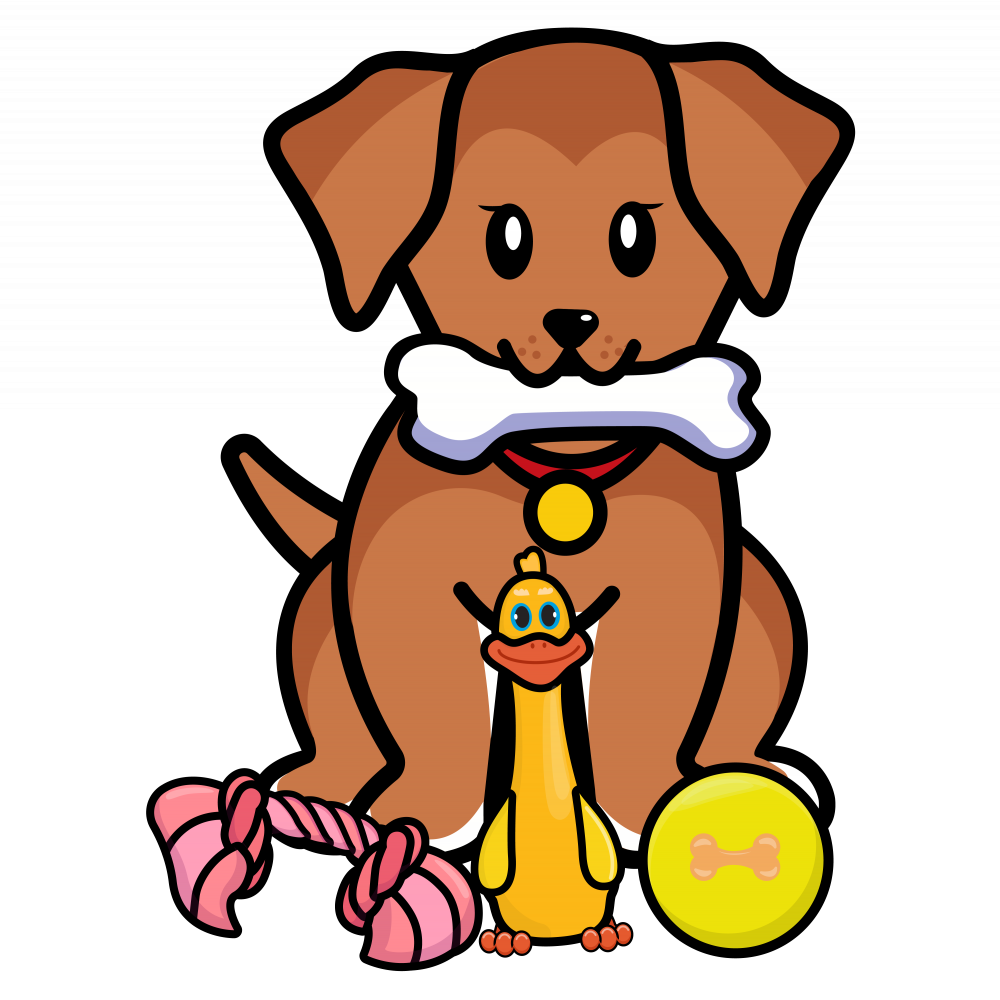 Puppy treats and toys pack